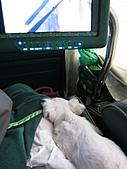 2010-09-21阿寶王宮吃鮮蚵(canon  S90照):跟媽媽一起搭遊覽車