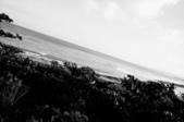 2011-10-21國境之南(sony nex3 拍攝):DSC02159.JPG