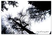 我的攝影輕旅行。GF1 S90 :15-1.jpg