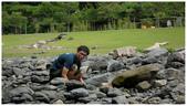 2010-21Y環島之旅:1935968467.jpg