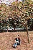 九族賞櫻去~:DSC_0378.JPG