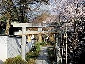 2008日本京都大阪賞櫻自由行~第1天:御院裡的石鳥居