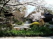 2008日本京都大阪賞櫻自由行~第1天:鳥居外拍