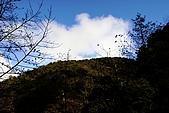 拉拉山:DPP_0007.JPG