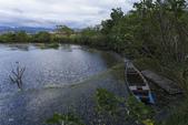 關渡自然公園:_MG_0712-1.jpg