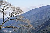 武陵遊:IMG_9062.jpg