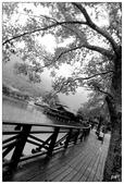黑白--台灣之美:_MG_4280-1.jpg
