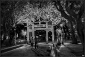 黑白--台灣之美:IMG_0217b.jpg