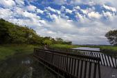 關渡自然公園:_MG_0699-1.jpg