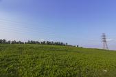 關渡花海:_MG_3236-1.jpg