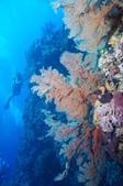 藍色海域 綠島:DSC07360.JPG