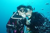 2012 潛水活動:DSC04961.JPG