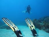 2011 潛水活動:蛙鞋的中性浮力.JPG