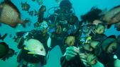 2012 潛水活動:DSC09446.JPG