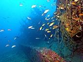 墾丁砂島沉船:左後甲板.JPG