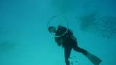 2012 潛水活動:DSC08929.JPG