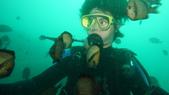 2012 潛水活動:DSC09394.JPG