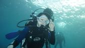 2012 潛水活動:DSC08670.JPG
