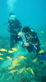2012 潛水活動:DSC09202.JPG