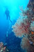 藍色海域 綠島:DSC07369.JPG