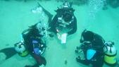 2012 潛水活動:DSC09246.JPG