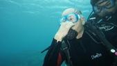 2012 潛水活動:DSC08704.JPG