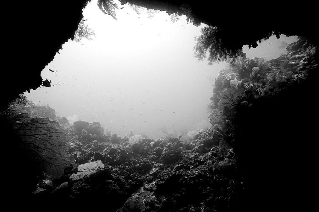 2014帛琉照片來嚕~: