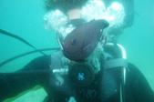2012 潛水活動:DSC02352.JPG