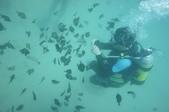2012 潛水活動:DSC02634.JPG