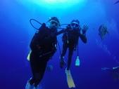 藍色海域 綠島:Fish.JPG