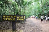 泰國喀比翡翠池 Emerald Pool krabi  20160206:IMG_5501.jpg