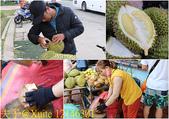 越南峴港 山茶半島 美溪海灘 20200124:12146301.jpg
