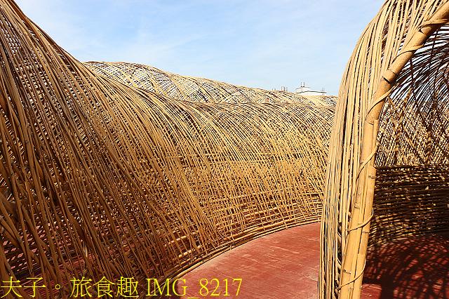 IMG_8217.jpg - 桃園平鎮 石門大圳過嶺步道 陂塘迷宮 20200922