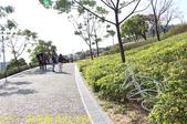 北投社三層崎公園「台版富良野花海」20210203:IMG_4068.jpg