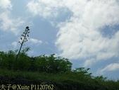 澎湖西嶼西臺:P1120762.jpg