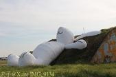 2014 桃園地景藝術節 (2014/09/04 - 09/14 海軍桃園基地) :IMG_9134.jpg