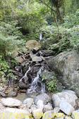 烏來信賢步道 20181121:IMG_9834 小池瀑布.jpg