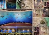 金門縣水試所 (金門鱟生態文化館):0262345689701.jpg
