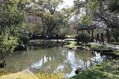 陽明山公園 2018/01/23:IMG_6204.jpg
