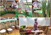 2019桃園農業博覽會  20190920:0542457.jpg