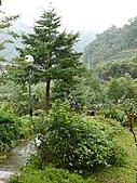 台北坪林石雕公園:P1110219.JPG
