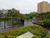 台灣大學生態池 複刻瑠公圳水源地 20200406:IMG_20200406_155644.jpg