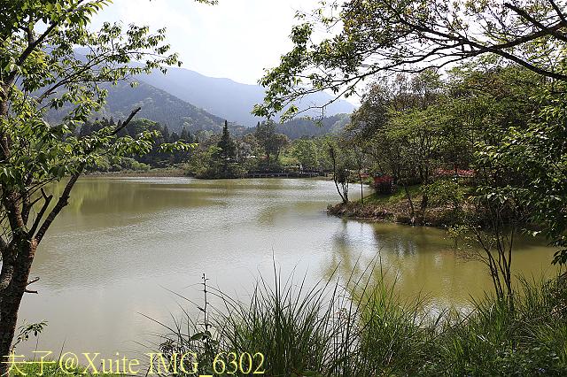 苗栗南庄向天湖 2015/04/03:IMG_6302.jpg