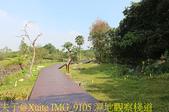 大漢溪山豬湖生態親水園區 20181107:IMG_9105 濕地觀察棧道.jpg