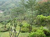 台北坪林石雕公園:P1110204.JPG