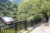 神山瀑布 20190924:IMG_0711.jpg