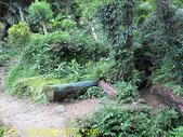 三峽鳶山彩壁 福德坑山 (鳶山) 20200603:IMG_5498.jpg