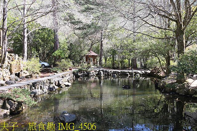 2021年 武陵農場 山櫻花、紅粉佳人 繽紛綻放 20210214:IMG_4506.jpg