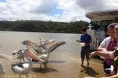 澳洲 Catch-A-Crab 黃金海岸翠德 (Tweed) 河捕蟹探險之旅 2013/02/07:IMG_7578.jpg