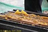 三奇蜜蜂生態農園 20190920:IMG_0208.jpg